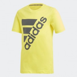 T-SHIRT RAGAZZO ADIDAS MUST HAVE BADGE OF SPORT DV0796